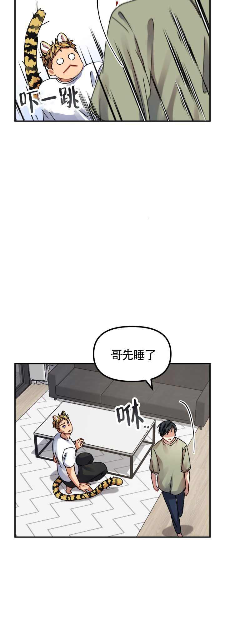 韩漫《老虎的婚期》身为猛虎,细嗅蔷薇!
